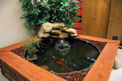 Indoor Water Garden Kits