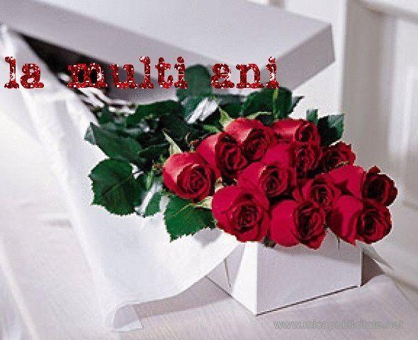 Cu Poze Buchete Multi De Ani Flori La