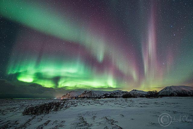 Trondheim Northern Lights December