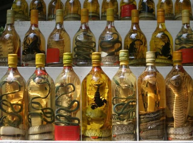 Snake Wine -- 10 Most Odd and Bizarre Food in World People ...