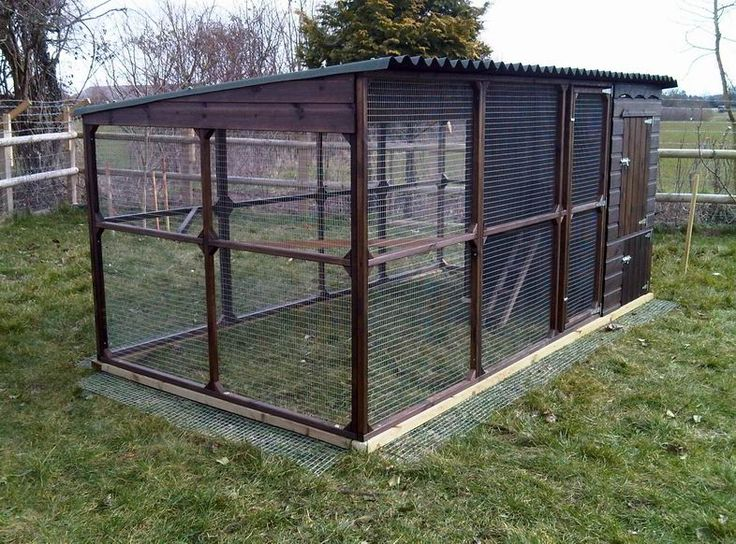 Chicken Houses And Runs Plans