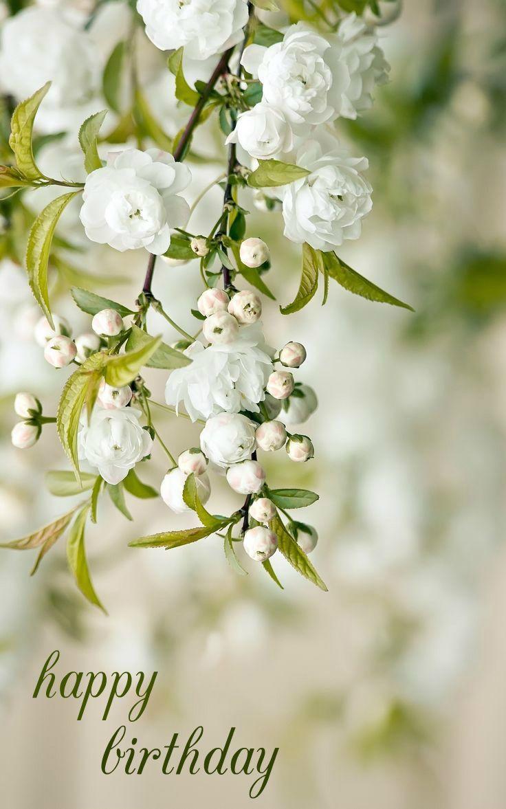 Spring Flowers Happy Birthday