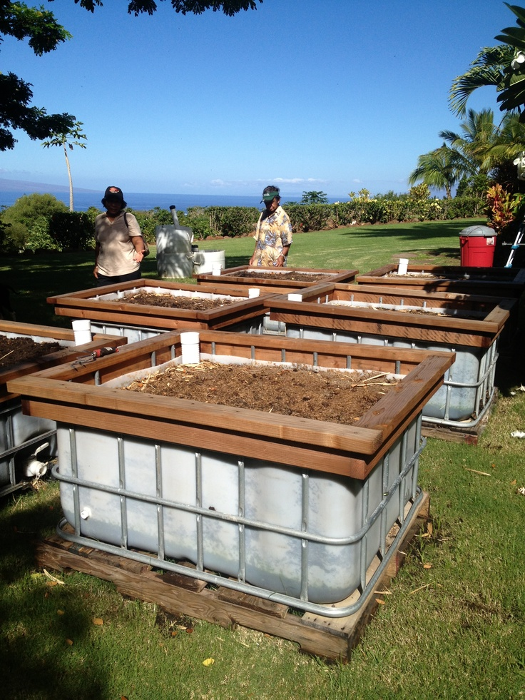 Vegetable Garden Box Drainage
