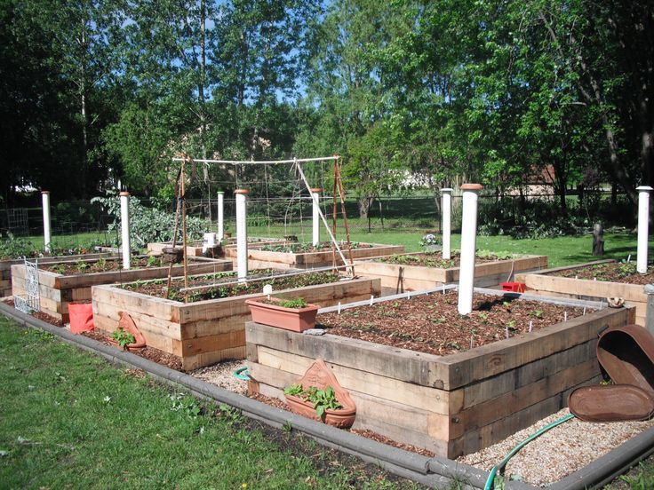Building Vegetable Garden Fence