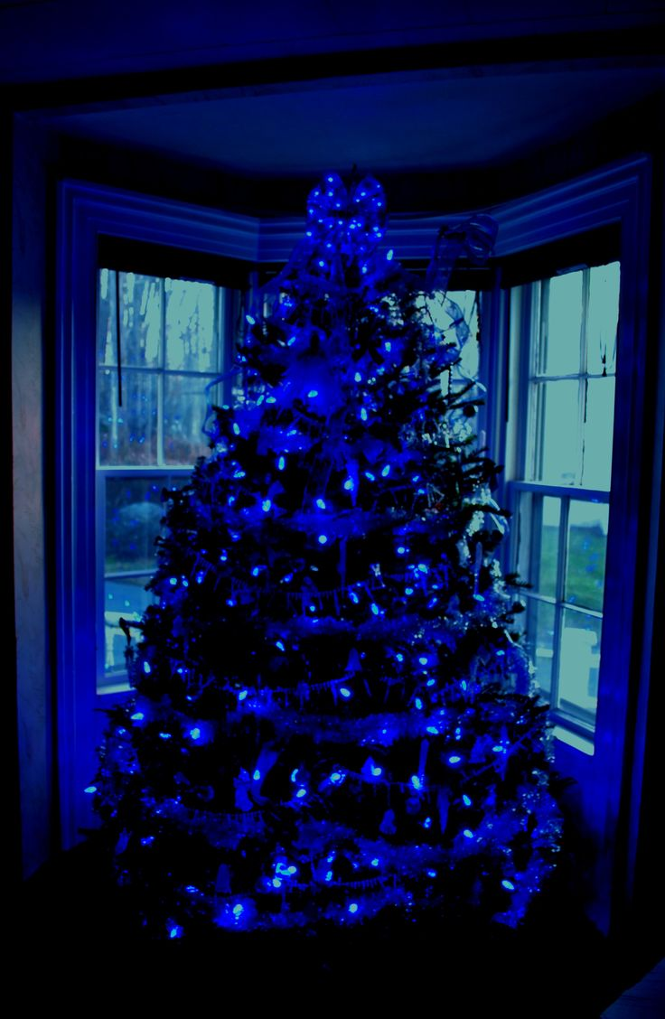Christmas Lights Blue