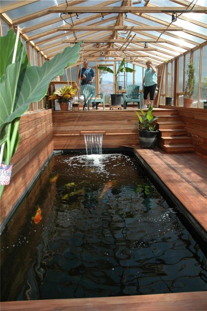 Tilapia Design Pond
