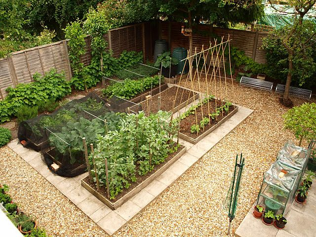 Making Raised Vegetable Patch
