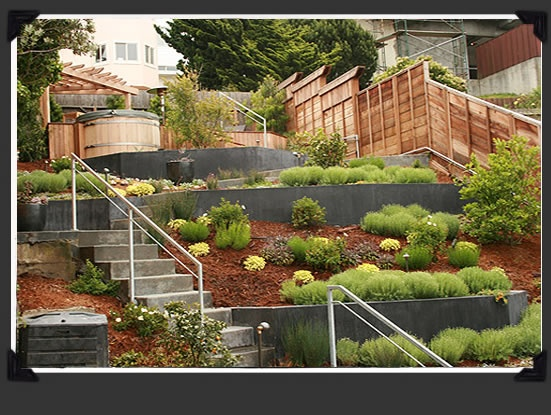 Terracing Ideas Hillside