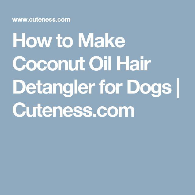 Diy Dry Shampoo Cats