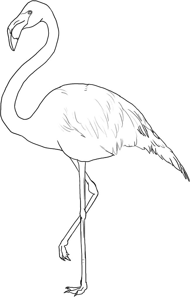 Flamingo Stencils Painting