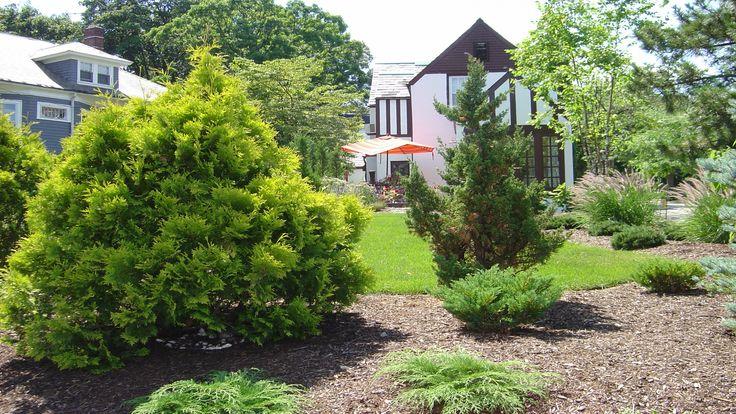 Landscape Design Gainesville Fl