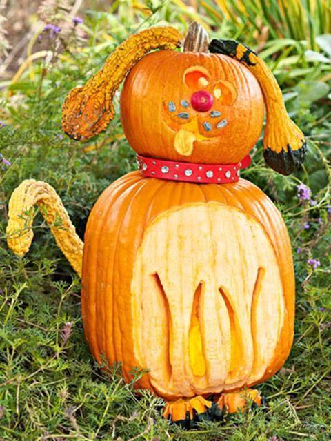 Pinterest No Carve Pumpkins