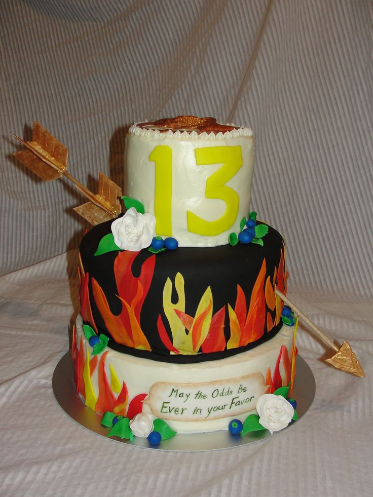 Good Hunger Games Birthday Cake Ideas