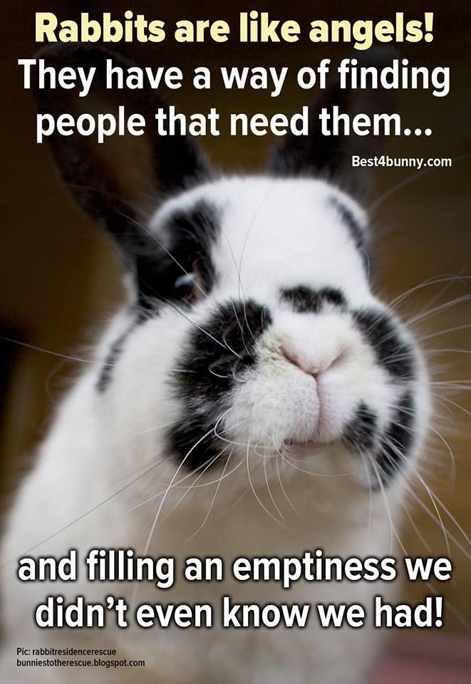 Memes Easter Horror Happy