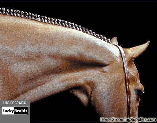 Different Ways Do Arabian Horses Mane