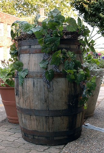 1000 Images About Wine Barrel Ideas On Pinterest
