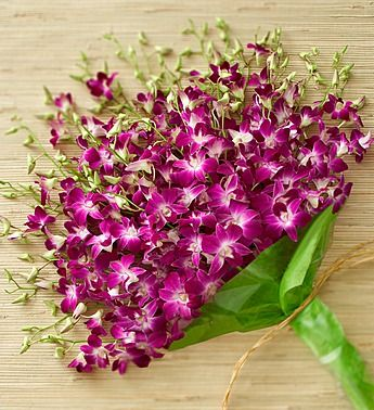46 Best Images About Artificial Dendrobium On Pinterest