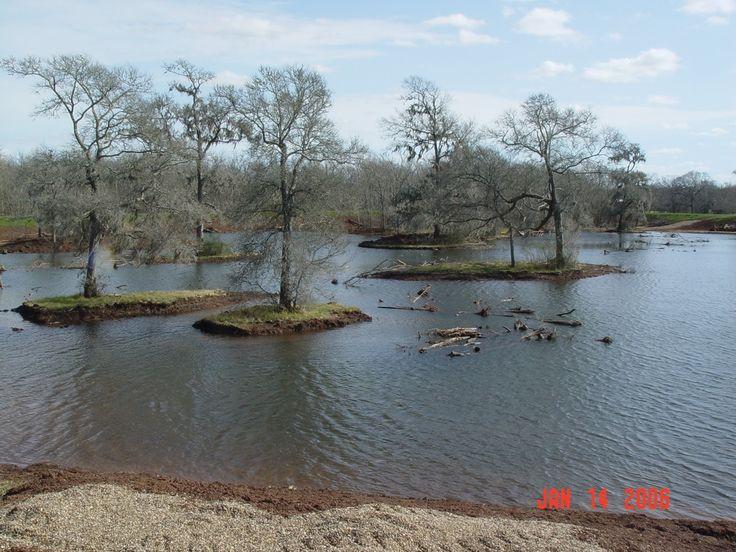 Earthen Fish Pond Construction