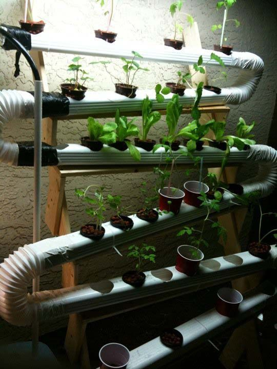 Cheap Indoor Hydroponic Grow Box