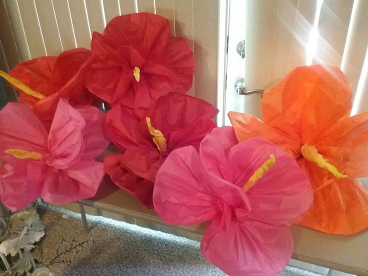 Diy Tissue Paper Hibiscus Flowers