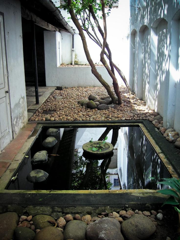 Japanese Pond Plants
