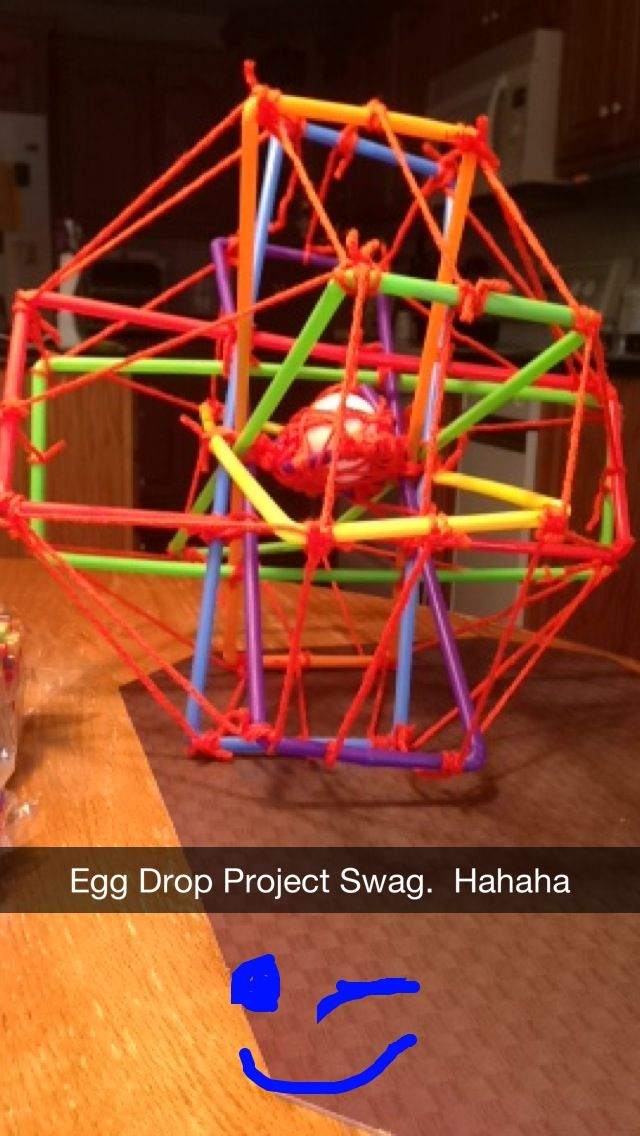 Egg Drop Science Project Examples
