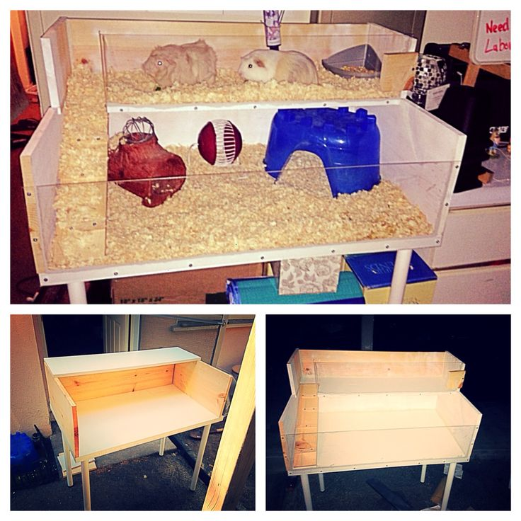 Build Own Your Desk Diy