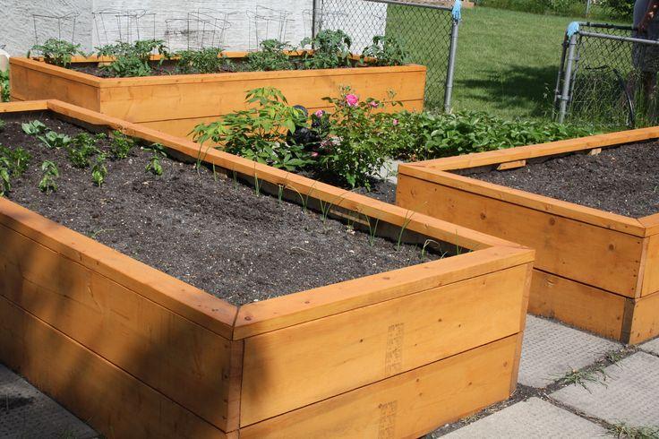Above Ground Vegetable Ideas Garden