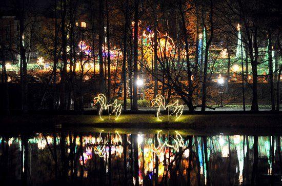 Lake Lanier Christmas Lights