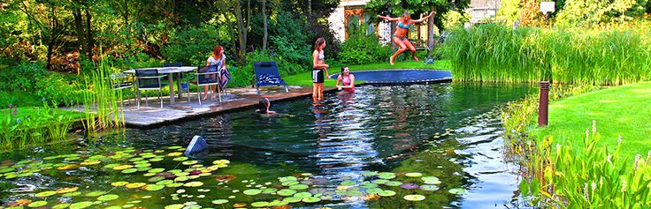 Pond Ideas Small Yards