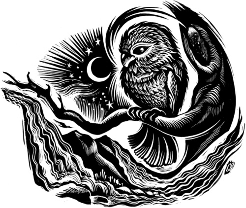 La Guadalupe Virgen Black De And White Tattoos
