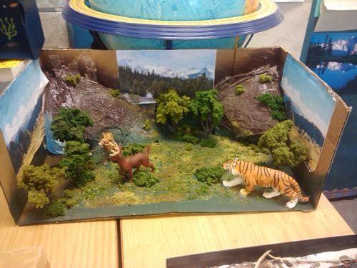 Desert Ecosystem Project 5th Grade