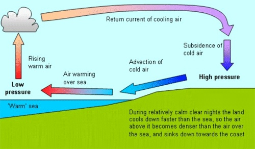 What Causes A Sea Breeze Diagram
