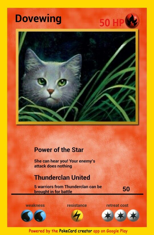 Cats Pokemon Warrior Cards