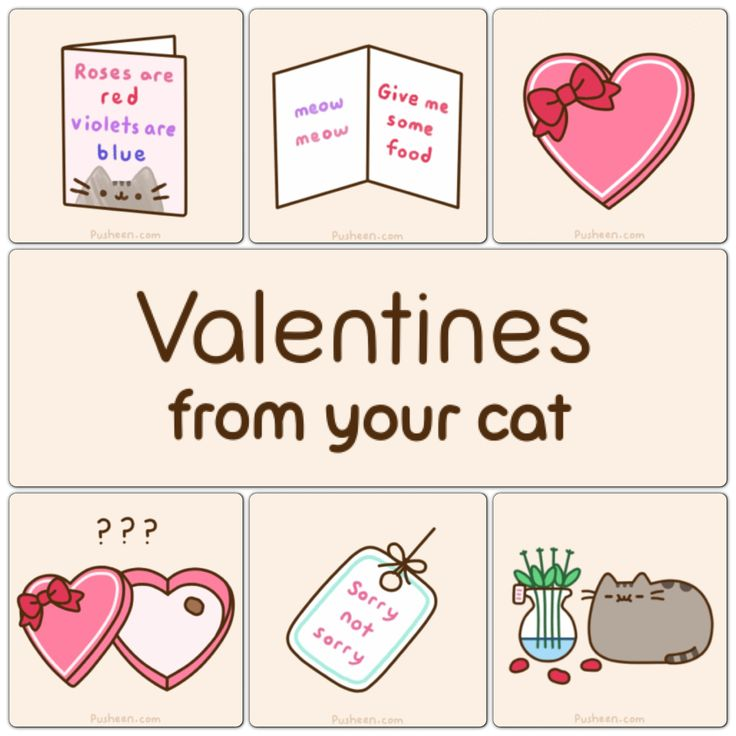 Pusheen Box Cards Valentines