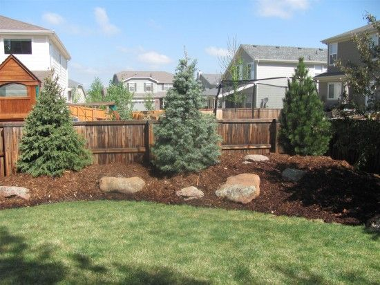 Small Rocks Landscaping White