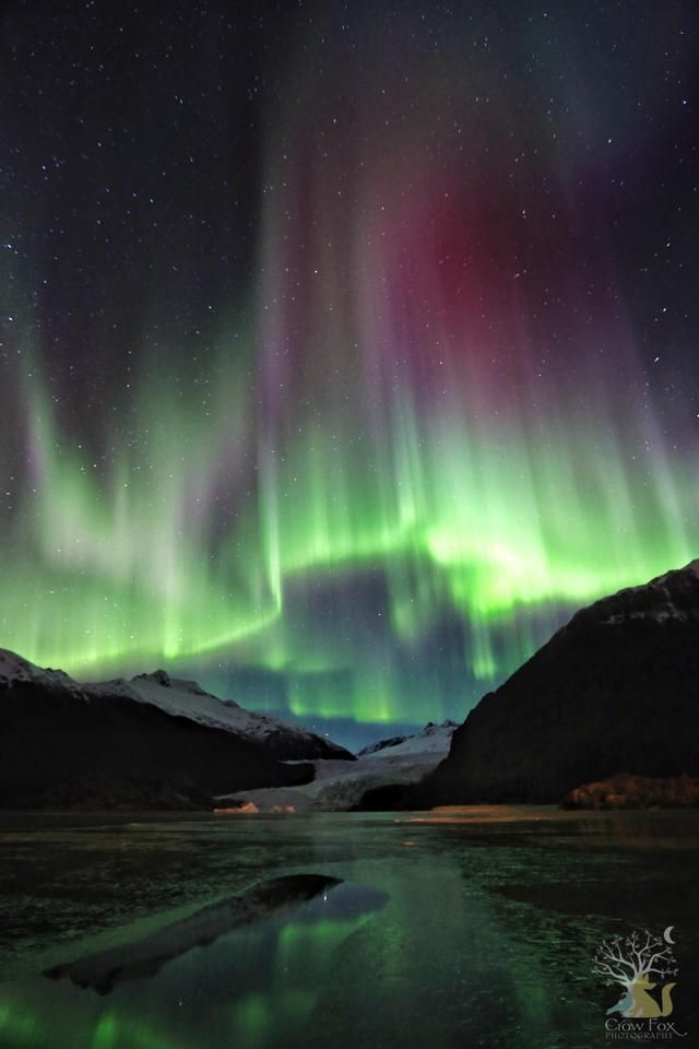Can You See Northern Lights Juneau Alaska