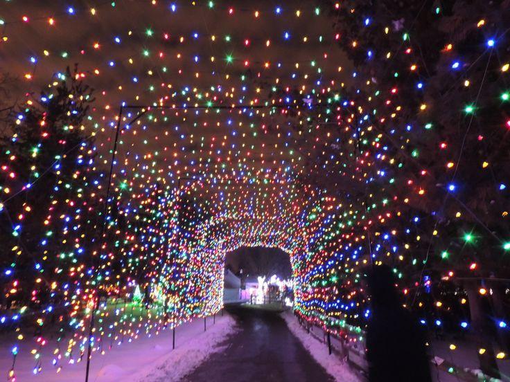 Festival Lights Detroit Zoo