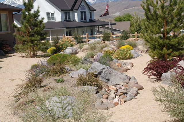 Xeriscape Landscape Design Colorado