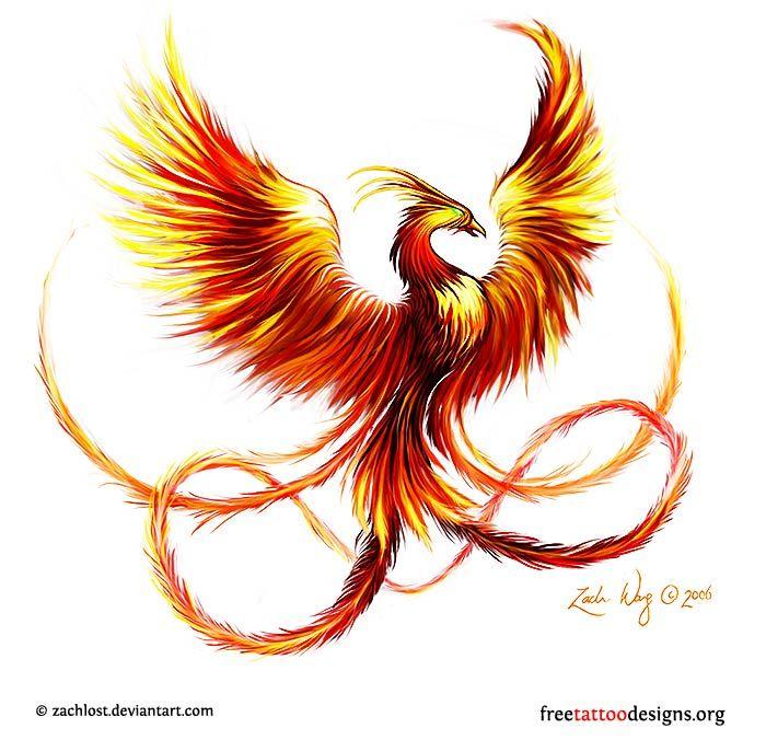 Colored Tattoo Phoenix Rising Small