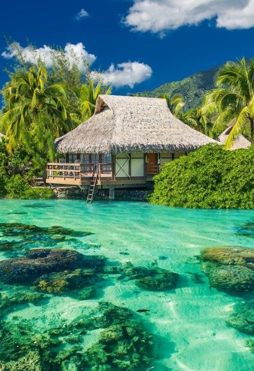 Tahiti Honeymoon Package Thomas Cook