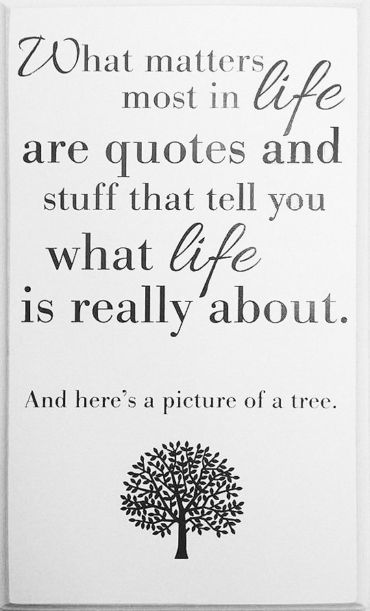 Are Things And Most Life Quotes Life Heres Tree About Picture Important