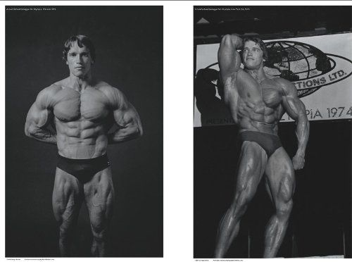High Arnold Quality Posters Schwarzenegger