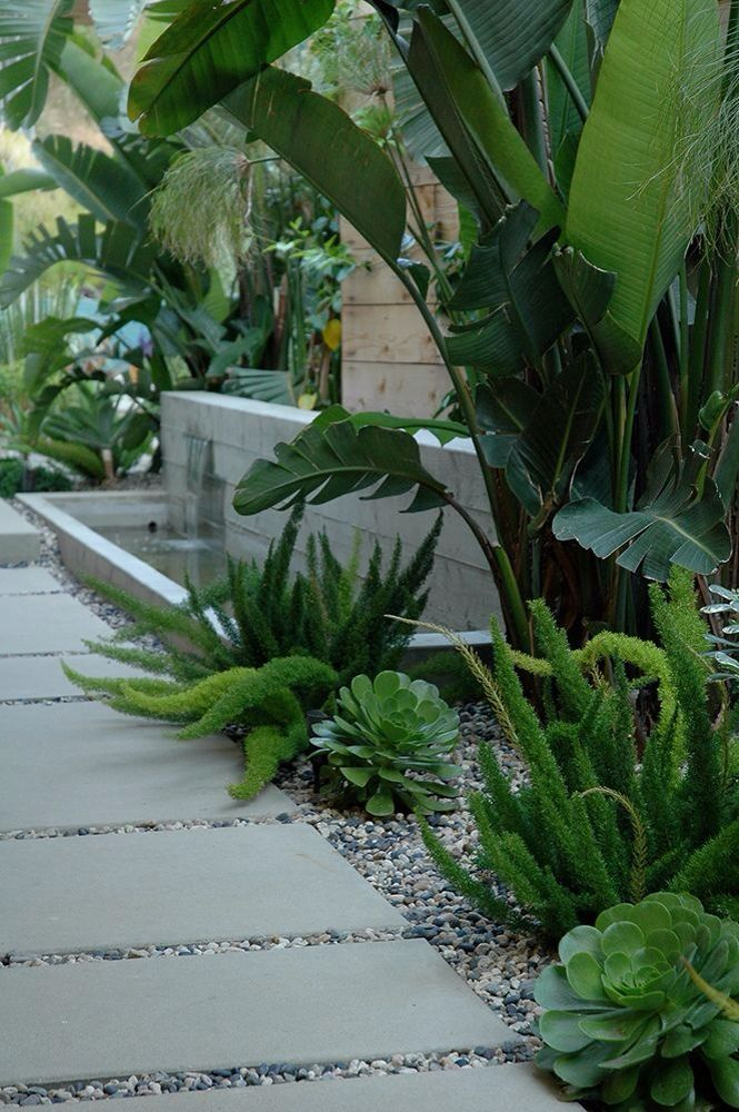 Outdoor Garden Design Tropical With Large Pavers Palm
