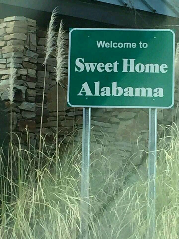 Home Veil Alabama Wedding Sweet