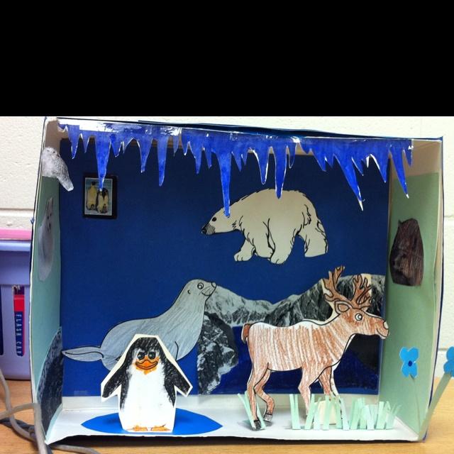 Polar Bear Diorama Examples