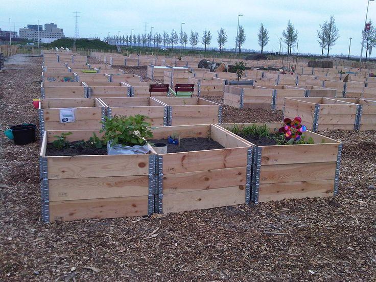 Backyard Raised Garden Ideas