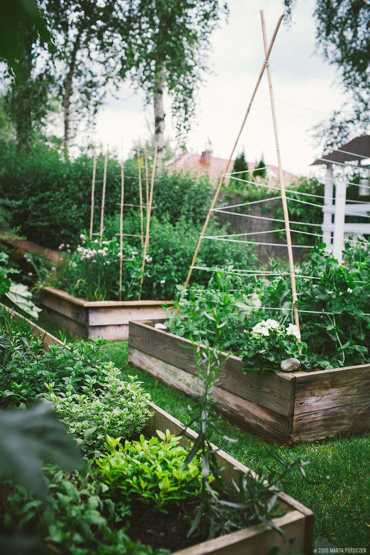 Raised Vegetable Garden Trug