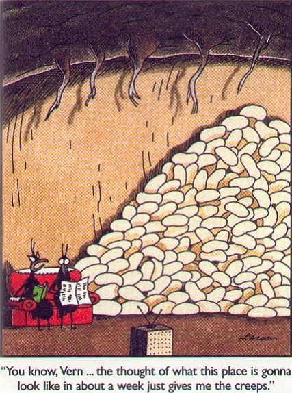 Color Larson Far Side Gary