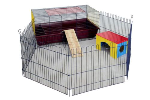 Cages Guinea Pigs Large Indoor